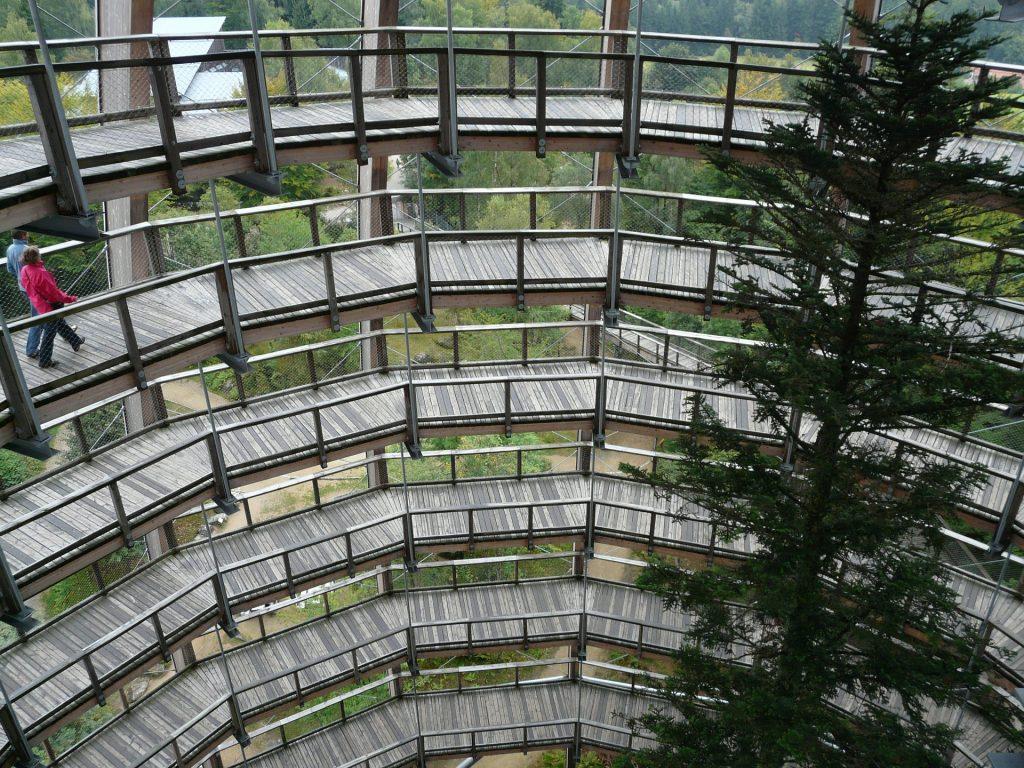 Kreisförmige Holzgeländer im Turmhaus des Baumwipfelpfad